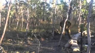 Смотреть онлайн Нездоровое развлечение австралийских солдат