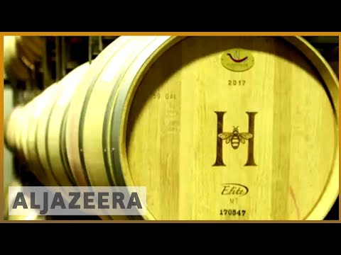 🇨🇳 🇺🇸 China tariffs damaging US wine industry | Al Jazeera English