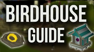 OSRS Birdhouse Guide COMPLETE - Fastest Route + Unlocking Mush Trees & Digsite Pendants (NOV 2018)