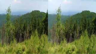 preview picture of video '3D - Leskowiec, Groń JP2, Zapora Świnna Poręba 2014'