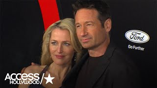 Секретные материалы, 'X-Files' Romance Rumors: Did David Duchovny Ever Hit On Gillian Anderson?
