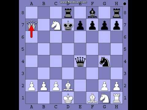 Halosarova zamka u Blackmar-Diemerovom  gambitu    BR:8