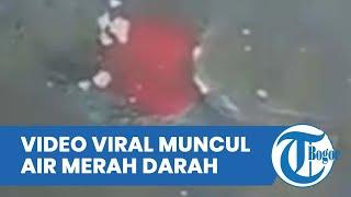 Video Viral Air Berwarna Merah Darah Keluar dari Pasir Pantai di Banyuwangi, Begini Penjelasannya