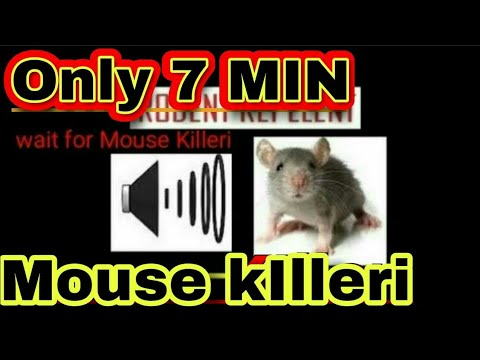 MOUSE KILLER - ON KILL MICE -Very High Pitch Sound Noises