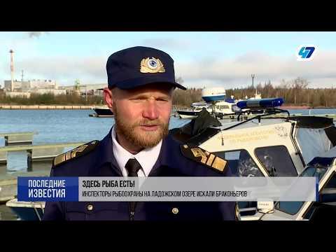 Рыба есть, а браконьеров нет: инспекторы побывали в рейде на границе Ленобласти и Карелии