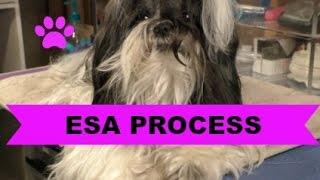My ESA Process
