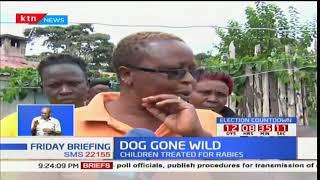 DOG GONE WILD: Six nursing injuries after stray dogs in Nakuru