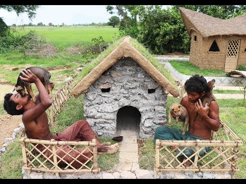 Build Stone Wild Dogs House