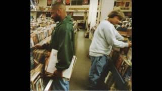 DJ Shadow - Endtroducing... (1996-2005) (2xCD Deluxe Full Album)