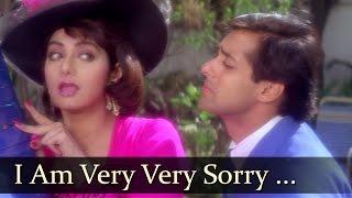 I Am Very Very Sorry Tera Naam | Salman Khan | Sridevi