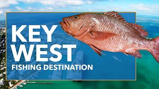 Key West Fishing: All You Need to Know | FishingBooker