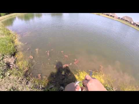 Going pond fishing is a great way to gain confidence on new baits, rods and technics.