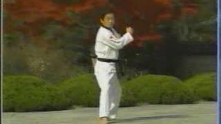 taekwondo poomse 14 Jitae