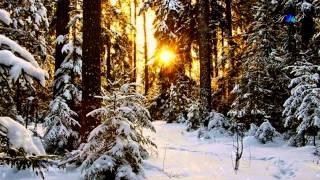 ♡ A Winter Morning - FIONA JOY (relaxing music)