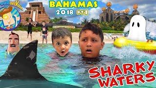 BAHAMAS SHARK HOTEL is Back! (Funnel Vision @ Atlantis 2018)