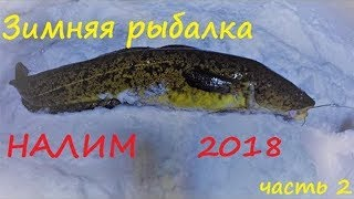 Зимняя рыбалка / НАЛИМ  / часть 2 / Winter fishing / BURBOT / part 2HD 2019
