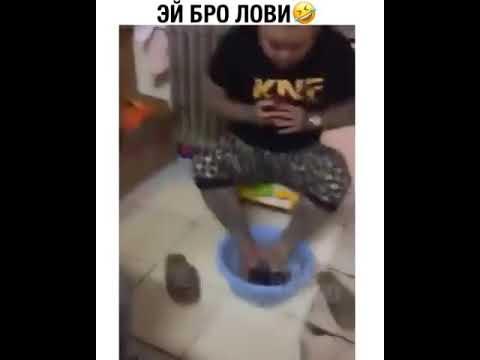 Come uova un piacere di verme