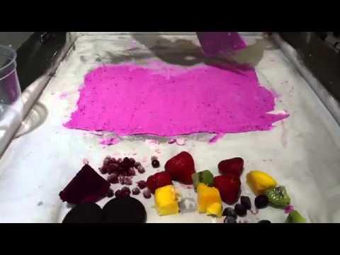 Fresh Fruit Ice Cream Machine