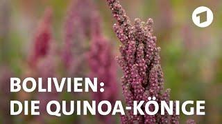 Superfood Quinoa: Bauern in Bolivien fürchten um ihre Existenz | Weltspiegel-Reportage