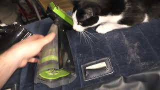 Bissell Pet Hair Eraser Handheld Vacuum Review