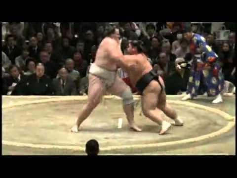 相撲裁判遭相撲手重壓..被擊暈了!