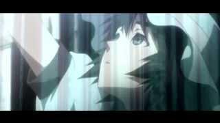 Disintegration - Steins;Gate AMV
