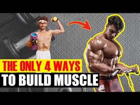 Le programme des entraînements sur de différents groupes des muscles pour les jeunes filles