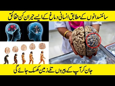 10 Facts Which Blow Your Mind | Digital Akhbaar