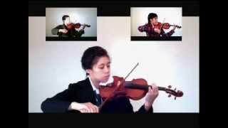 Carry On My Wayward Son (violin)