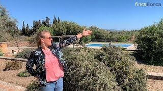 Video Finca auf Mallorca Son Tovell