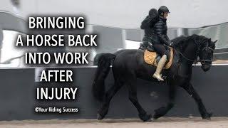 BRINGING A HORSE BACK INTO WORK AFTER INJURY - Dressage Mastery TV Episode 234