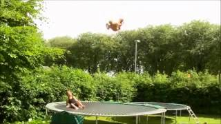 Мастера акробатики или как говорится people are awesome