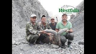 Dagestan Tur Jagd in Aserbaidschan mit Westfalia Jagdreisen
