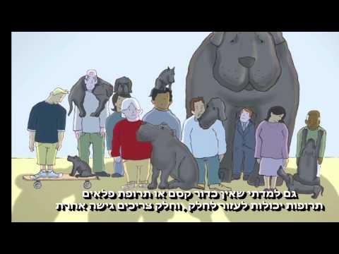 סיפור הכלב השחור: סרטון מרגש על התמודדות עם דיכאון