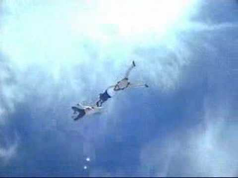 World's Gutsiest Guy Goes Skydiving Without Wearing A 'Chute
