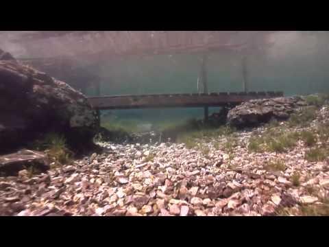 Grüblsee Tauchvideo, Grüblsee,Österreich