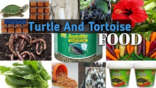 Different Types of Turtle And Tortoise Food In Hindi 2021