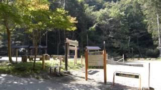 日影沢キャンプ場のイメージ