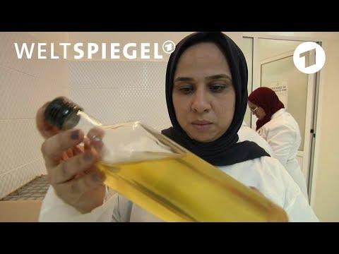 Marokko: Die Frauen und das Arganöl   Weltspiegel