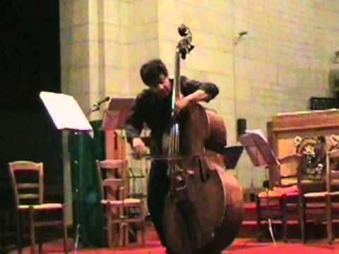 Satie a la contrebasse (Romero)