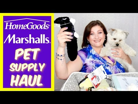 Homegoods Marshalls Haul For Pet Dog Puppy Toys Supplies Fall 2018