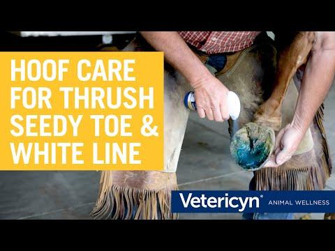 Vetericyn Hoof Care (8 oz) Video