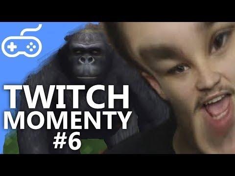 TWITCH MOMENTY #6
