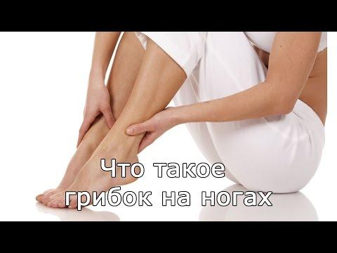 Gribok auf den Beinen des Beines blau