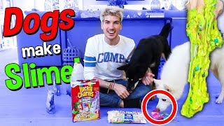 Dogs Pick My Slime Ingredients!