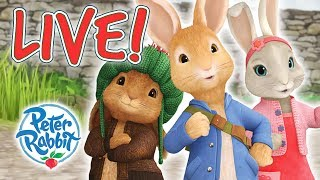 Peter Rabbit | Rabbit Loves Radishes - Livestream