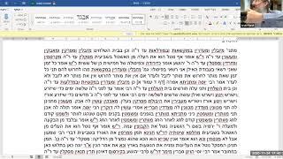 תלמוד ירושלמי מסכת שביעית פרק ב הלכה ב