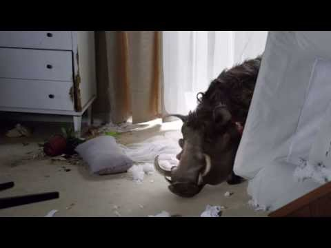 Canal+ Commercial (2015 - 2016) (Television Commercial)