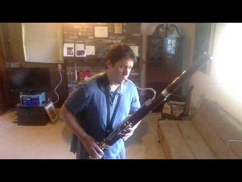 Mozart Bassoon Concerto Mvt. 1 Exposition