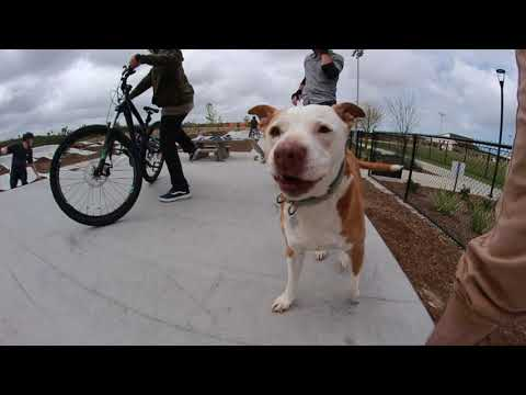 New San Diego Pump Track and Skatepark Tour